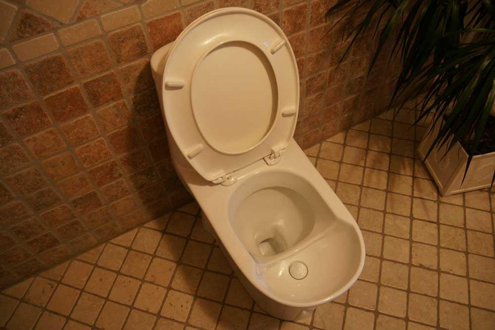 Urinsorterande vattentoalett